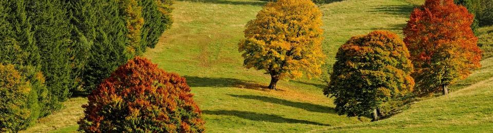 Vom Zaudernden Monat September Herbstzeit