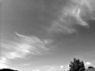 elfenhimmel schwarzweiß